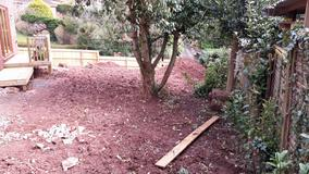 Alison Bockh Garden Design and Landscaping - North Devon - Steep drop to lower garden